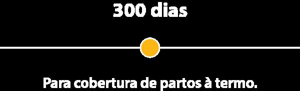 300dias
